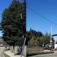 Se informa que hoy se iniciaron los trabajos de traslado de poste en Calle Nueva Norte.